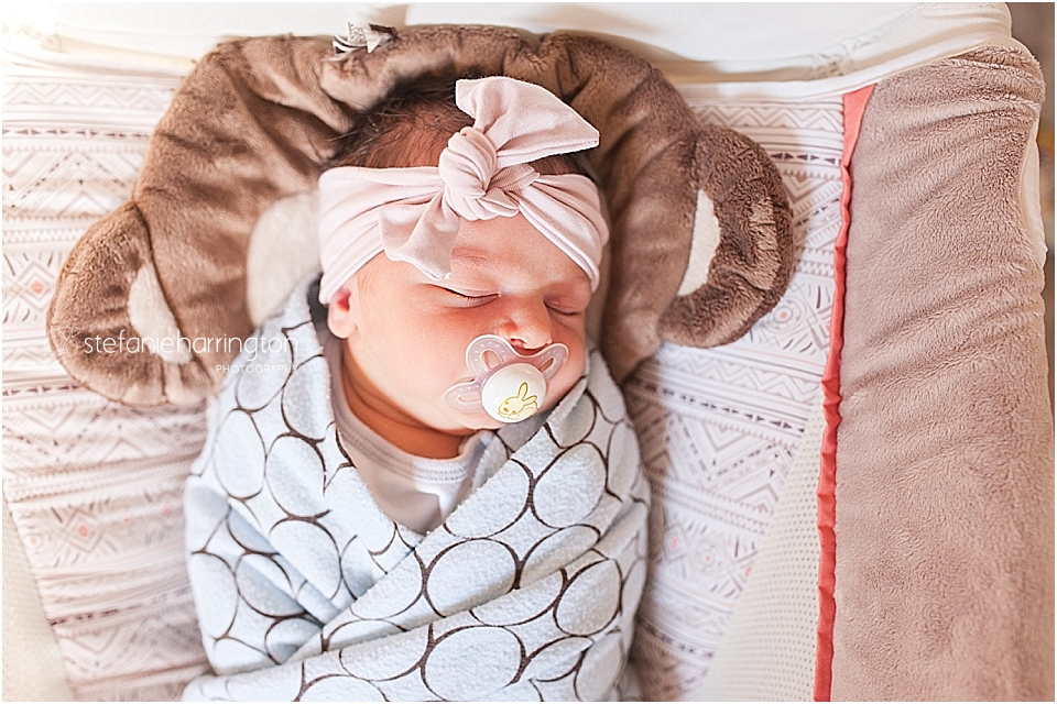 baby sleeping in a rock n play sleeper with swaddle and pacifier by dc nova newborn photographer